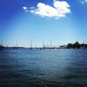 Beautiful weekend to hang out by the harbor!