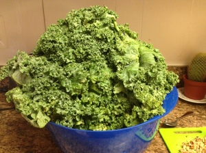 The Kale Monster that's been living in my fridge this week.